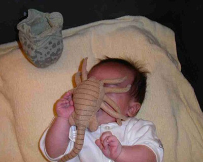 [Image: facehuggerbaby.jpg]